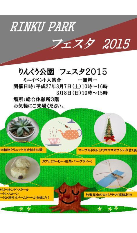 RINKU-PARK-フェスタ 2015№2