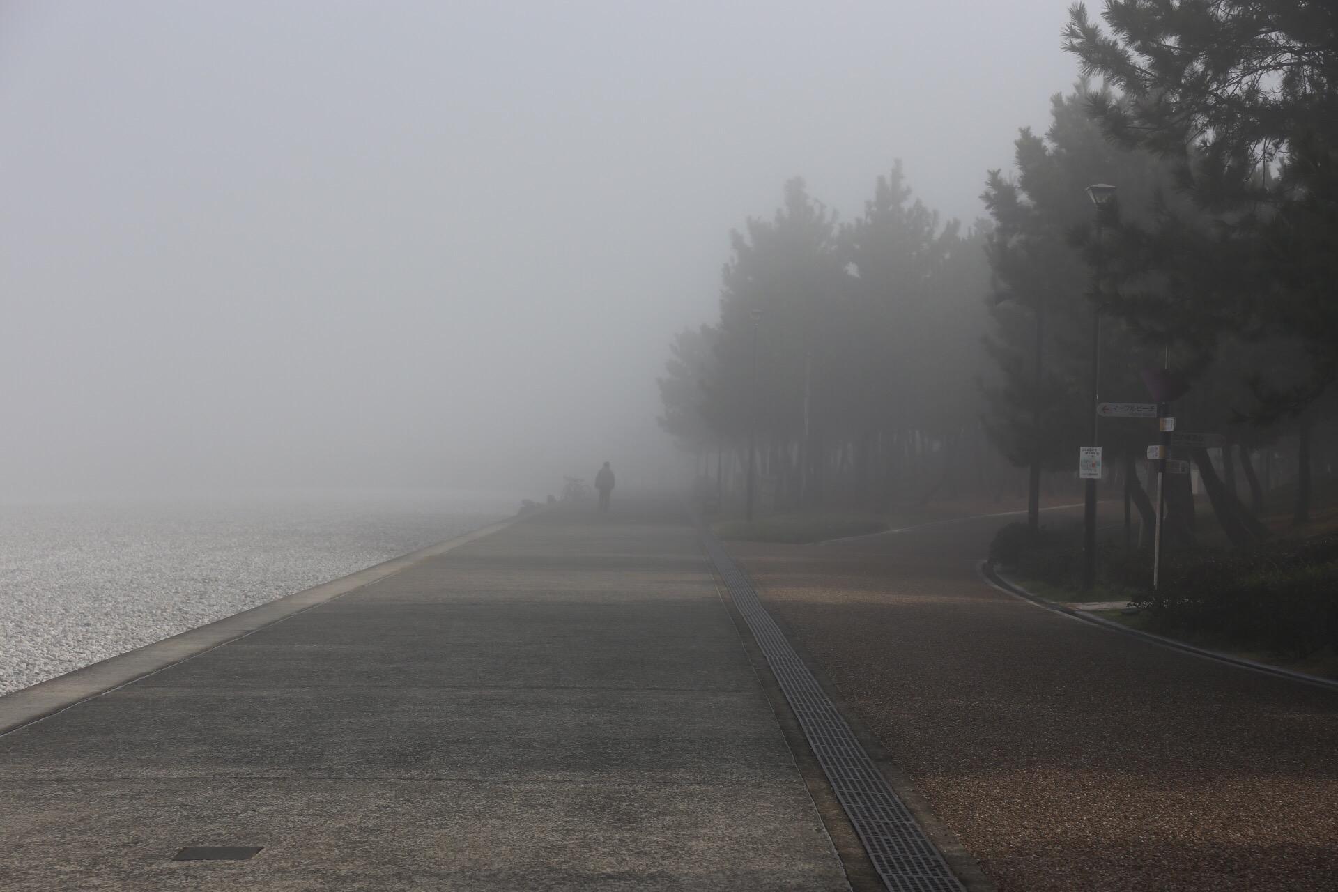 関空 濃霧